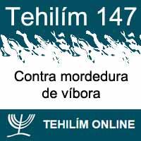 Tehilím 147