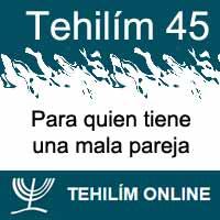 Tehilím 45