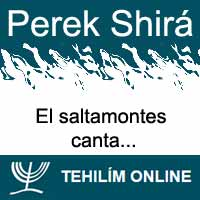 Perek Shirá : El saltamontes canta
