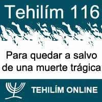 Tehilím 116
